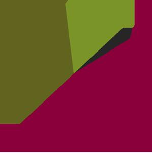 Income and Revenue Pie Chart