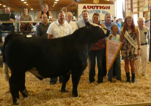 Res_Gr_Champ_Steer
